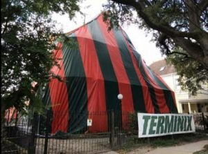Termite Control Tent Defend System