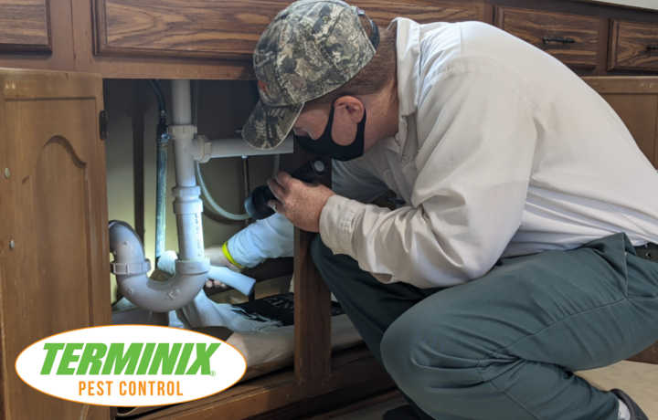 What Attracts Spiders & How To Get Rid Of Them? - Terminix Pest Control Technician