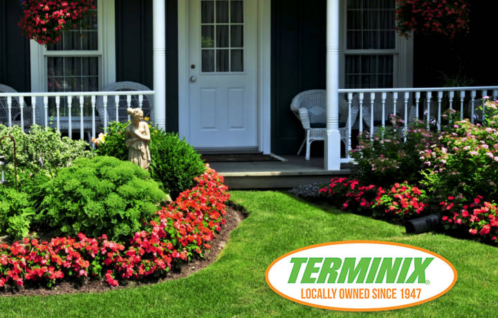Home Value Terminix