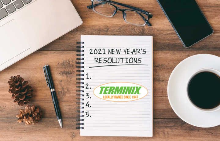New Year's Resolutions : Get Terminix Pest Control